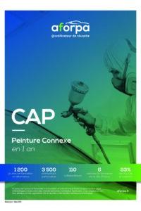 CAP Peinture Connexe en 1 an